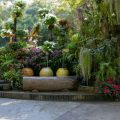 Backyard Design Inspiration and Ideas Backyard Design Inspiration and Ideas 4 120x120